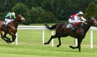 reverse-forecast-Horse-racing[1]
