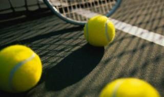 strategiya_stavok_na_tennis[1]